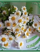 http://stihoff.ucoz.ru/_ph/119/1/379960018.jpg