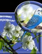 http://stihoff.ucoz.ru/_ph/119/1/671709255.jpg