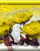 http://stihoff.ucoz.ru/_ph/119/1/853744064.jpg